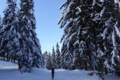 ski nordique au col du Barrioz